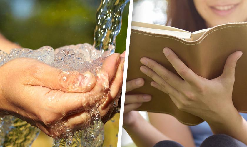 """""""La Biblioteca del Agua"""": La curiosa historia de la cooperativa de agua potable rural que promueve cultura en la comunidad"""
