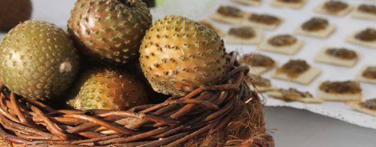 La rumpa, el desconocido fruto endémico del norte de Chile que se comercializa en productos gourmet