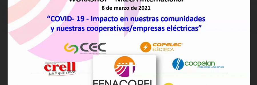 En taller internacional, Fenacopel presentó desafíos e impactos del Covid-19 en la prestación de servicio de energía eléctrica