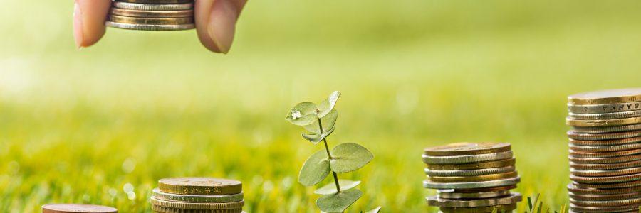 Coopera participa en curso de finanzas sostenibles